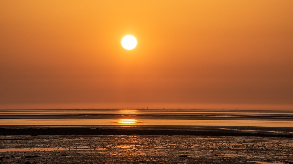 A glowing sun above the sea, with a row of wind turbines only just visible on the horizon.